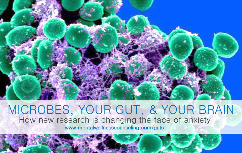 Microbes, Your Gut, and Your Brain | How new research is changing the face of anxiety