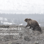 Consequences vs. Punishment PARENTING COUNSELING